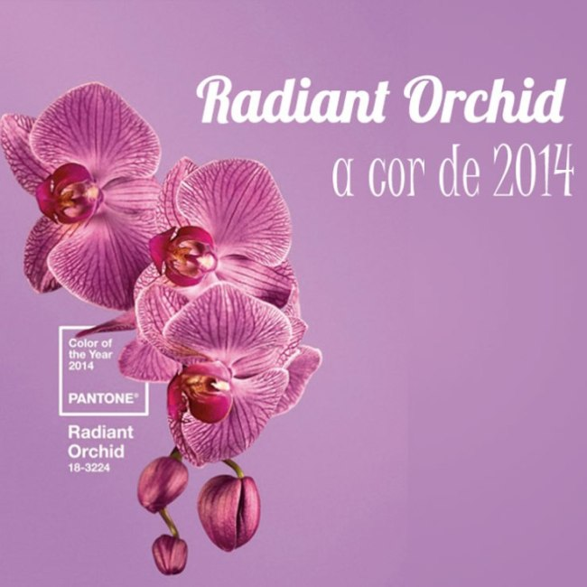 1-look-do-dia-pantone-cor-do-ano-orquidea-radiante